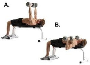dumbbell bench press for chest