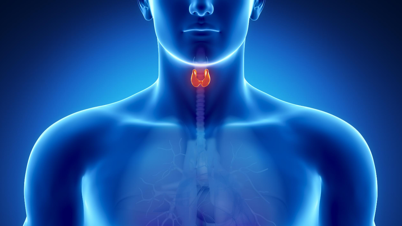 what to eat and what to avoid in thyroid   Fitkill