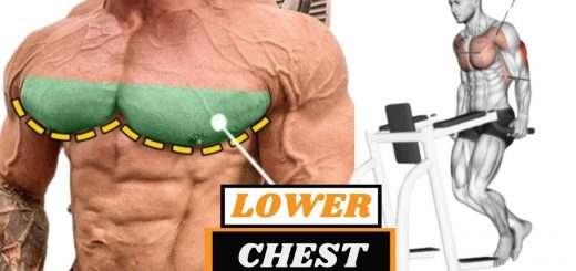 5 Best Exercises For Lower Chest Muscle Mass Enhancers